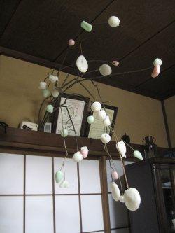 稲の花2.jpg